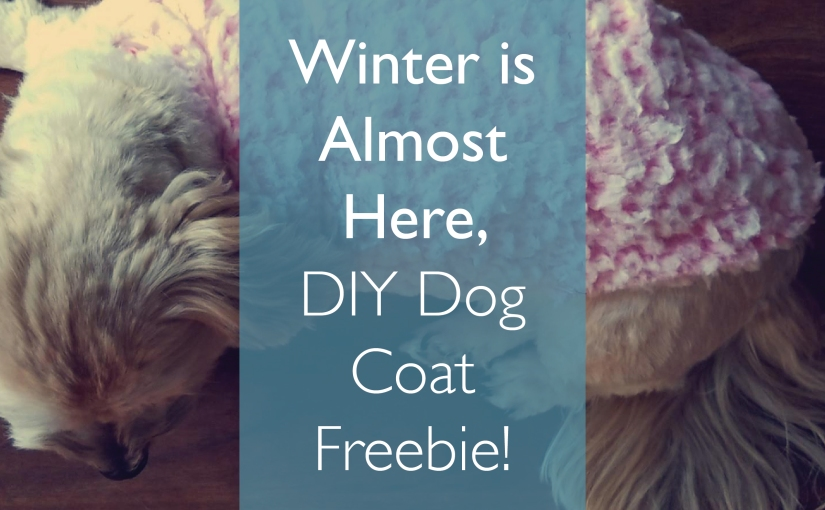 Dog Coat Freebie!